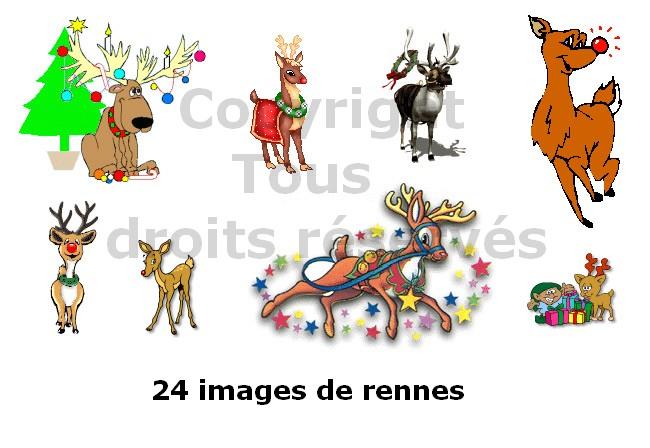 images de rennes de noël